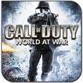 Саранск,  хакер,  Call of Duty,  сервер
