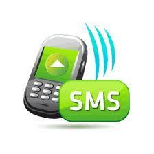 Роскомнадзор,  SMS,  контроль