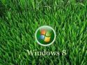 безопасность, вирусы, windows 8